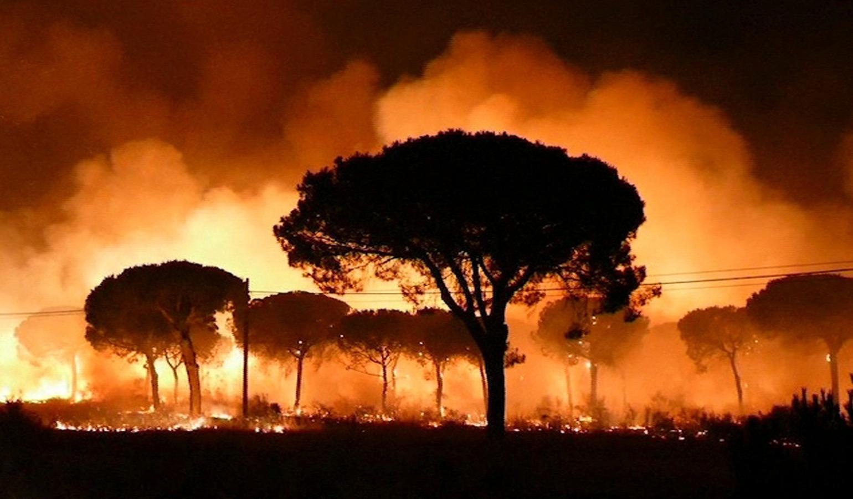 Cerca de 2.000 personas han sido desalojadas a lo largo de la pasada madrugada por el avance del incendio forestal que se registró a las 21.15 horas de este sábado cerca de Doñana